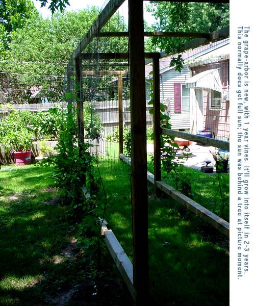 Garden Layout, Main Beds
